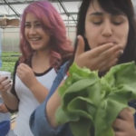 Former Homeless Youth Learning Aquaponics With SafeKids Program